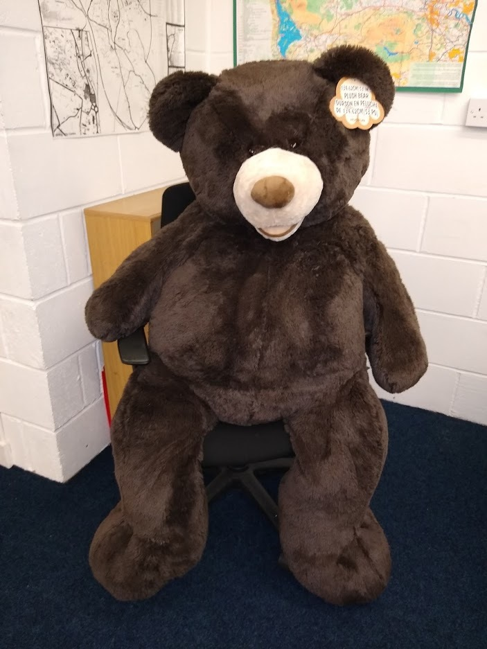 Fundraising Teddy